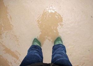 sump pump overflow in basement