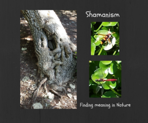 Shamanism finding meaning in nature