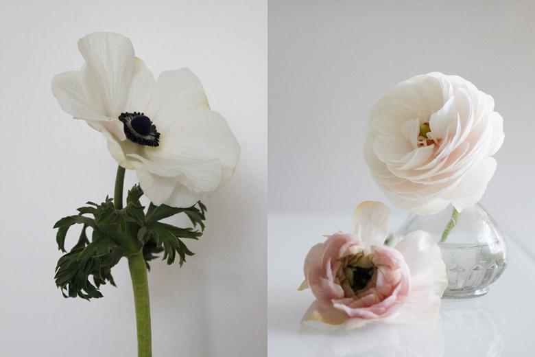 ranunc and anemone