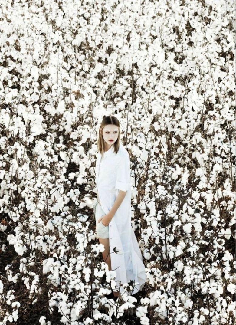 Flower_Dream3