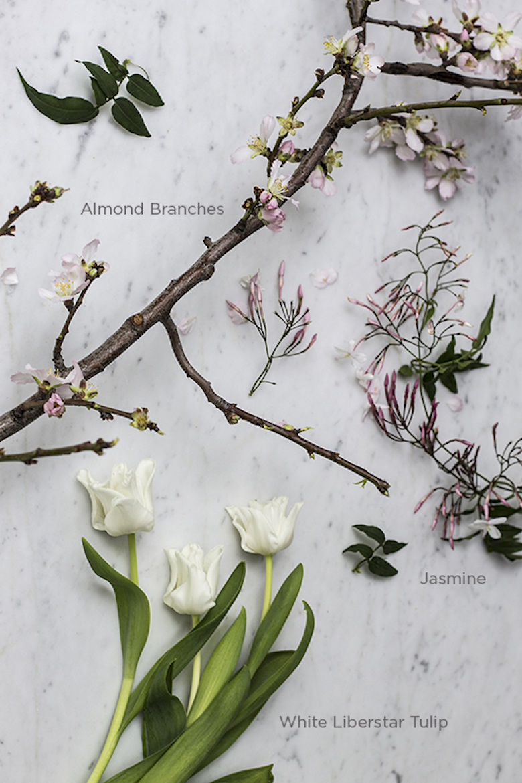 bloom7_web