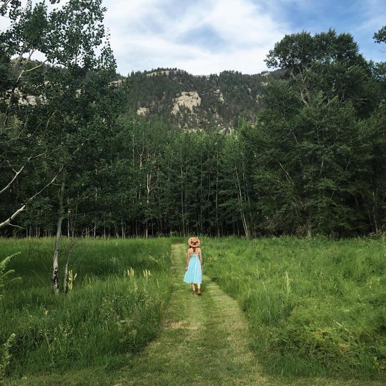 Montana 8