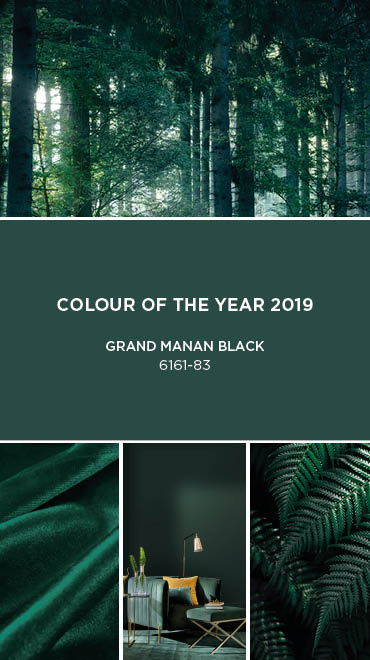 SICO 2019 Colour Of The Year