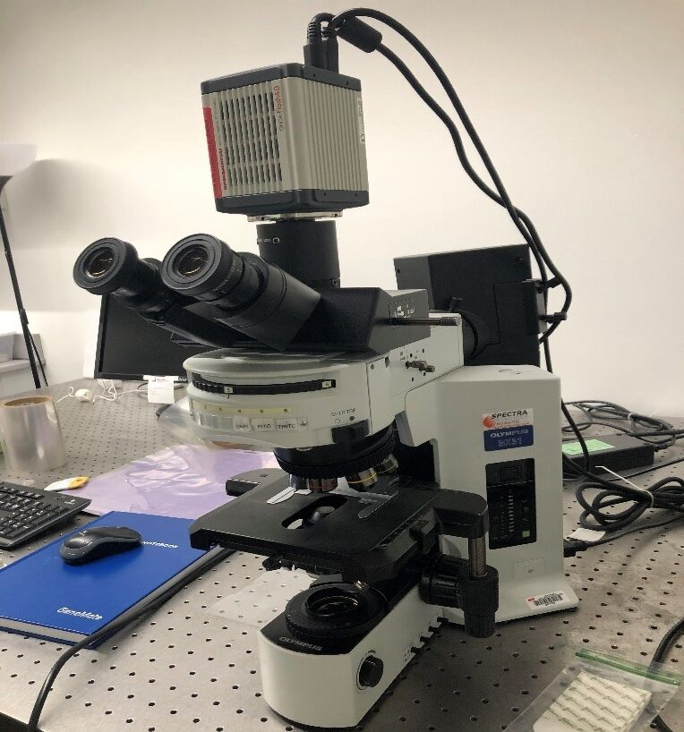 Advanced Optical Microscope with camera