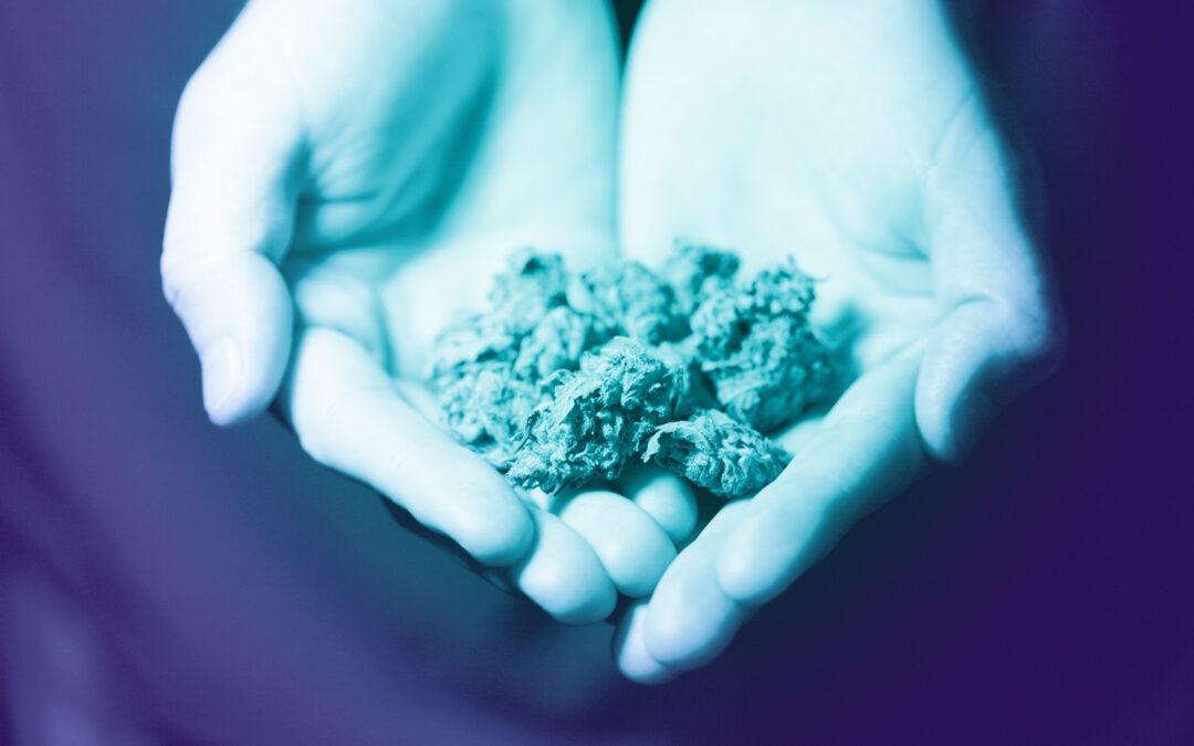 Is Marijuana Addictive?