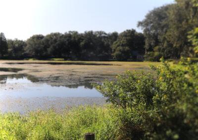 Residence Exterior-Lake