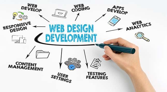 Development Professional