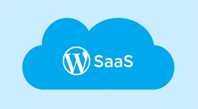 SaaS Using WordPress