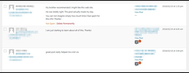 Spam Comments on WordPress