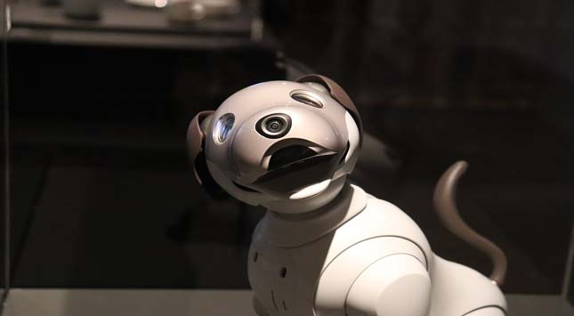 Robotic Guide Dogs
