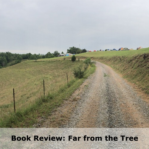 Book Review: Far from the Tree