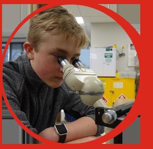 Child Viewing Microscope