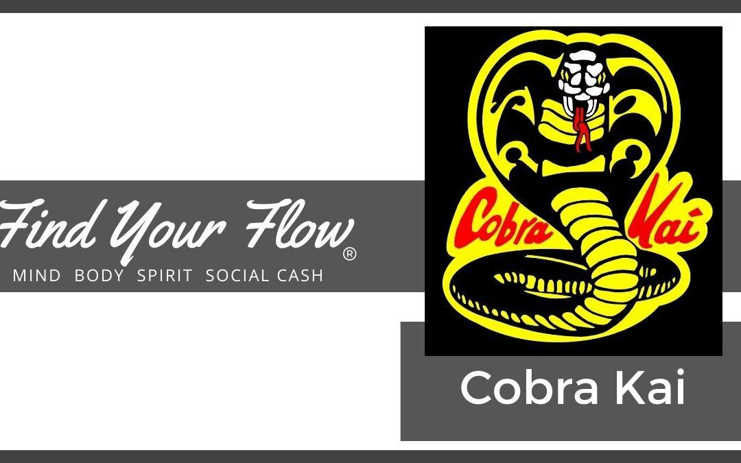 Find Your Flow Blog - Cobra Kai #findyourflow