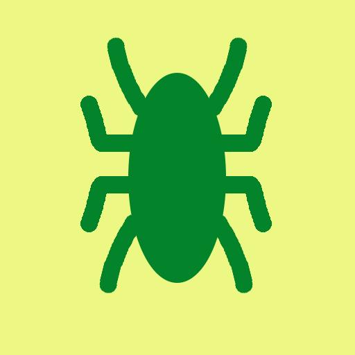 Joro Spider Information