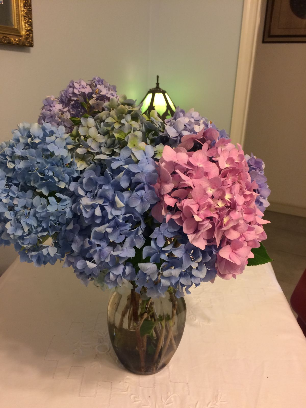 https://www.littleenglishguesthouse.com/hydrangeas-roses-and-more/