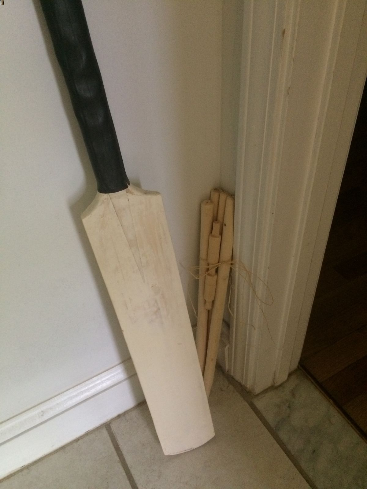Cricket, just cricket!