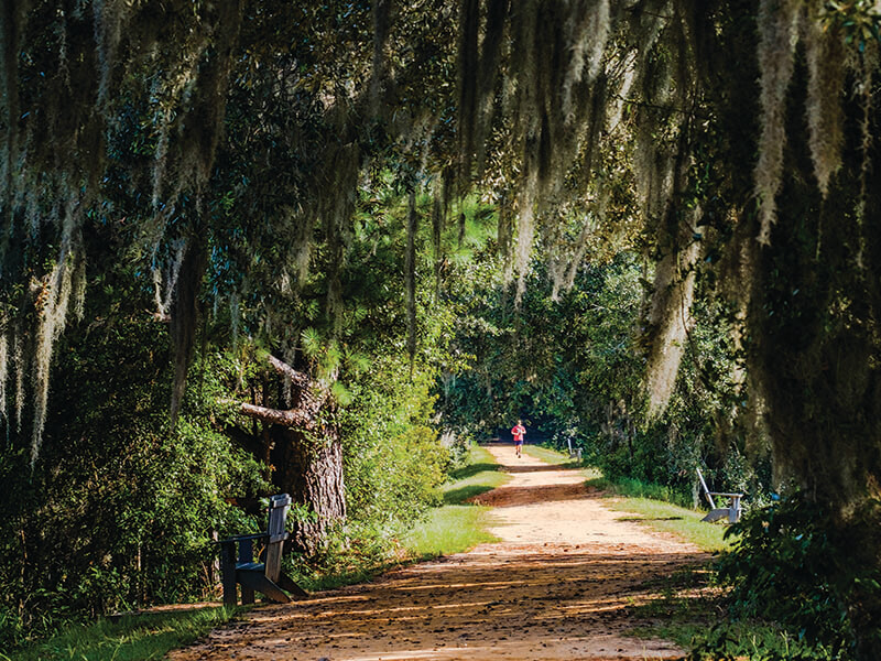 Alford Greenway | Little English Guesthouse B&B, Tallahassee, FL