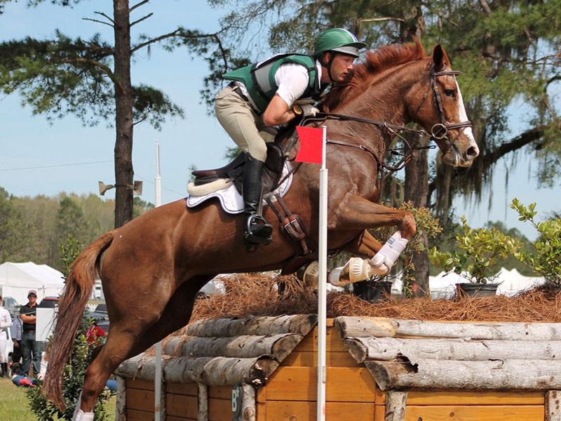 Red Hills International Horse Trials | Little English Guesthouse B&B, Tallahassee, FL