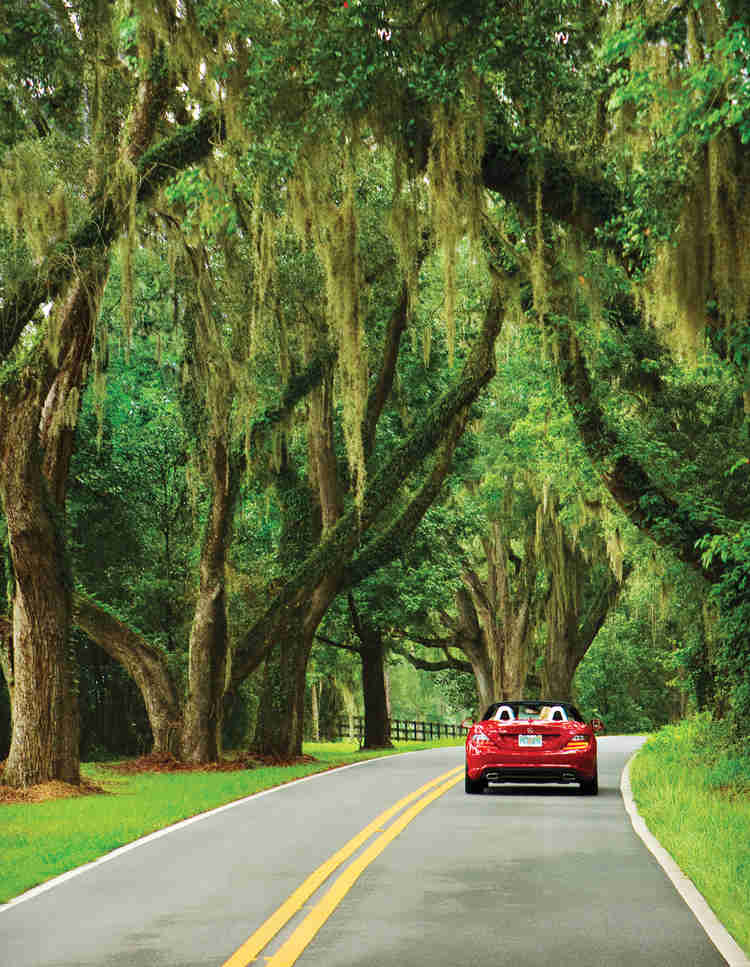 Where should we go on vacation ?   Little English Guesthouse B&B, Tallahassee, FL