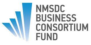 NMSDC Business Consortium Fund and Triad Investments Announce New President: Sahra S. Halpern