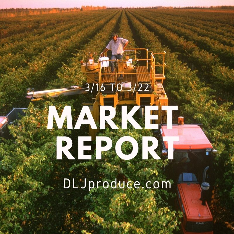 dlj produce market report for march 2020