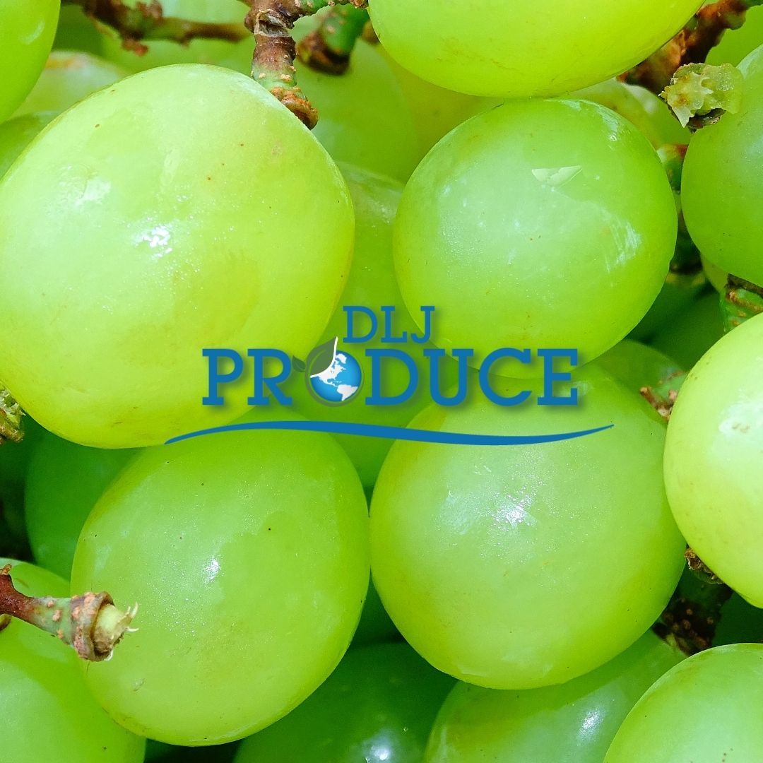 How Did Seedless Grapes Start Anyway