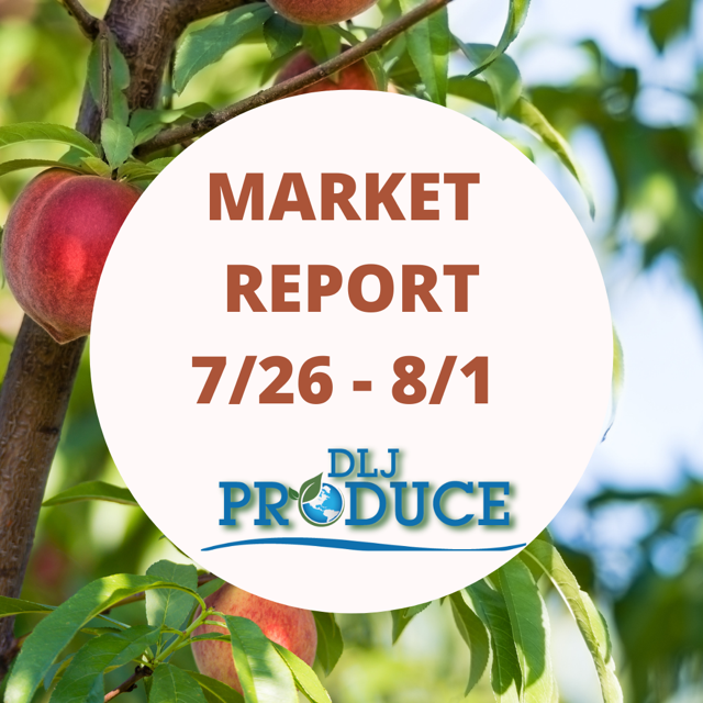 DLJ Market Report 26 July to 1 Aug