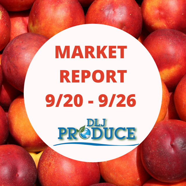 Grapes, Tree Fruit and Citrus Market Report September 20 to September 26