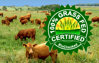 Get your Cattle -100% Grass Fed Certified™