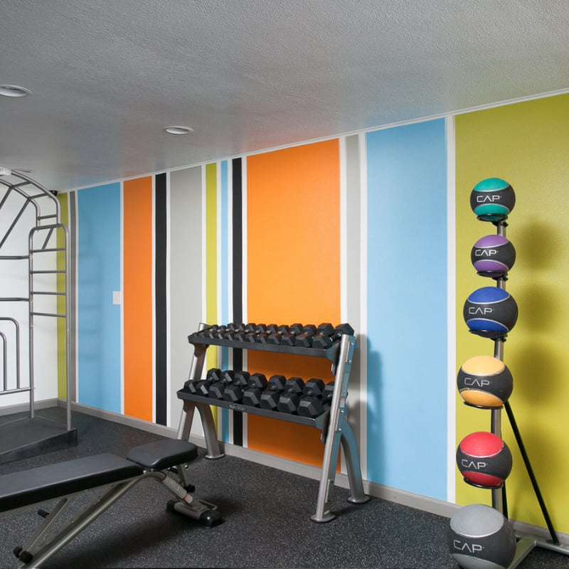 Medicine Balls and dumbbell weights in Fitness Room