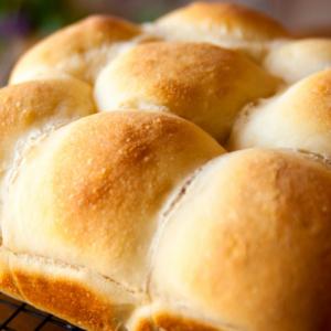 Photo of fresh dinner rolls