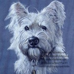 privately commissioned portrait of west highland terrier