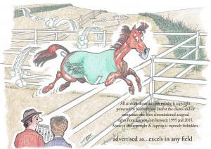 buying horse misleading advert