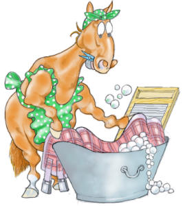 image for laundry company van horse rugs