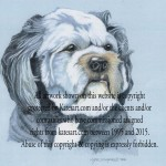 pastel portrait of tibetan terrier - commission