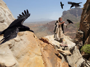 Elijah Ravens