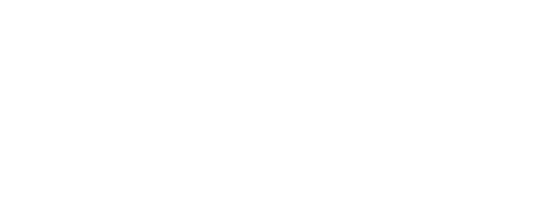 Mead Foundation