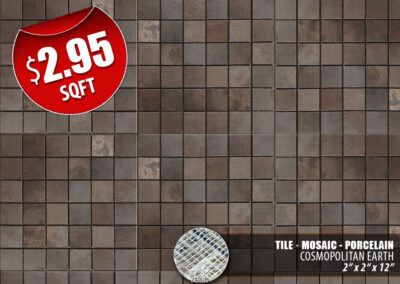 Cosmopolitan Earth Porcelain Tile
