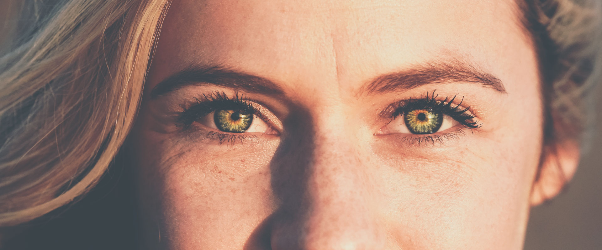 Eyecare Plus Ashgrove