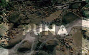 PUNA - Chica Cascada ft Mariana Paraway