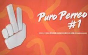 PURO PERREO #1 / Enganchado - Pareci