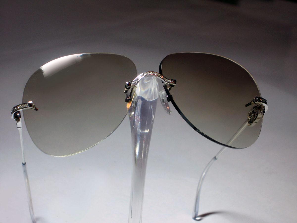 Chameleon Eyewear Y58s