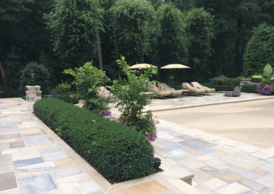 Patio, pool and wall plantings