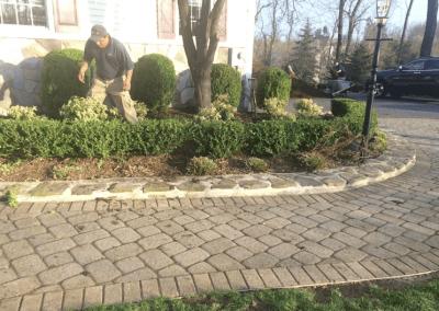 Block walkway & shrub plantings