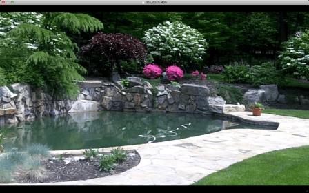 Landscape maintenance of a backyard