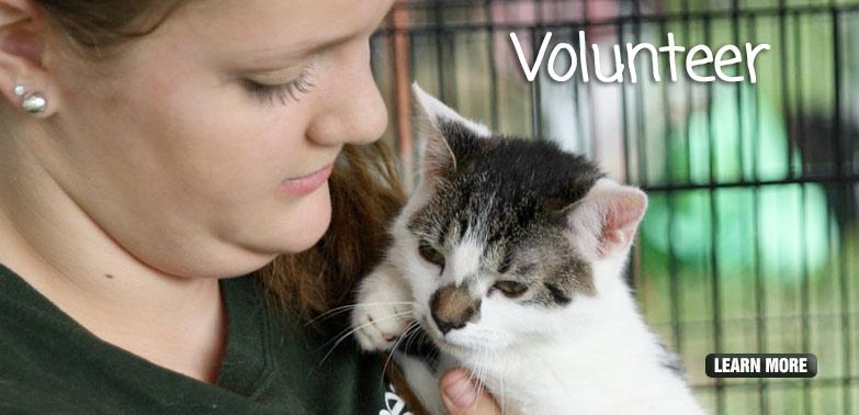 home_banner_volunteer