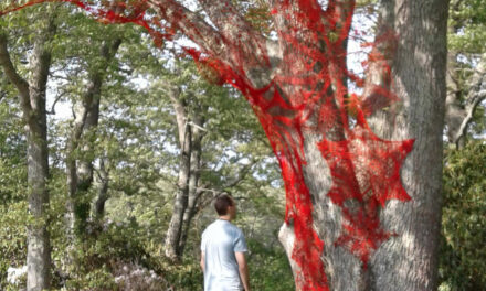 Artists Turn 43 Acres Into an Outdoor Museum Like You've Never Seen