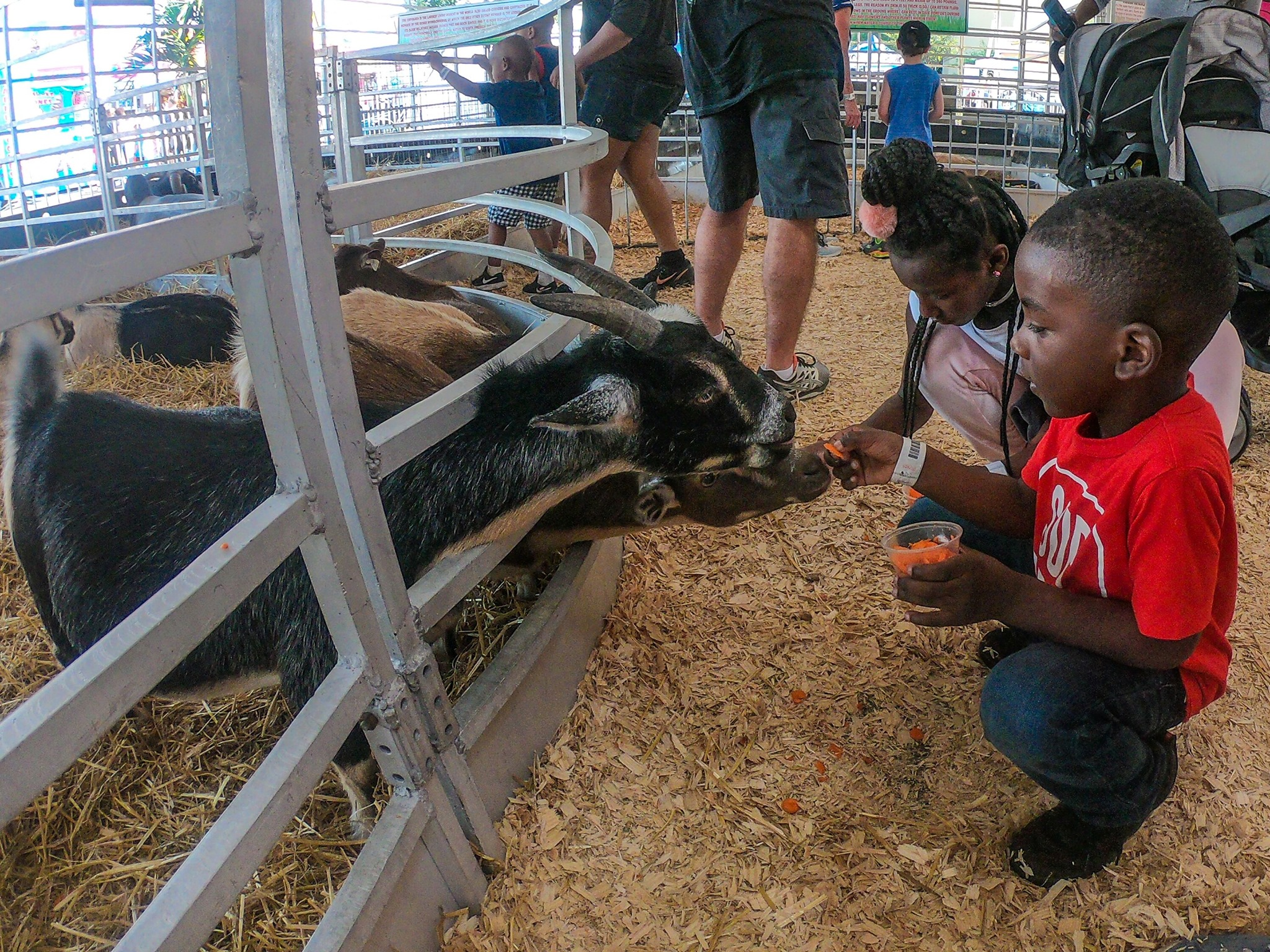 Mid-South Fair (Southaven, MS)