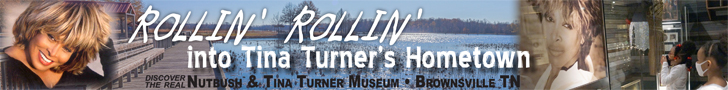 Tennessee Delta Heritage Center/Tina Turner Museum