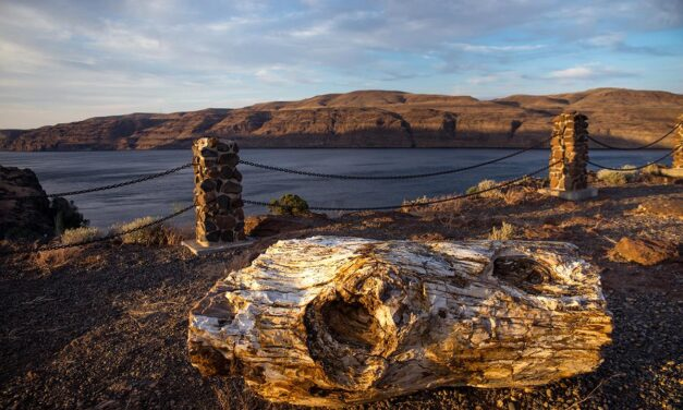 The Best State Parks In Central Washington Near The Columbia River